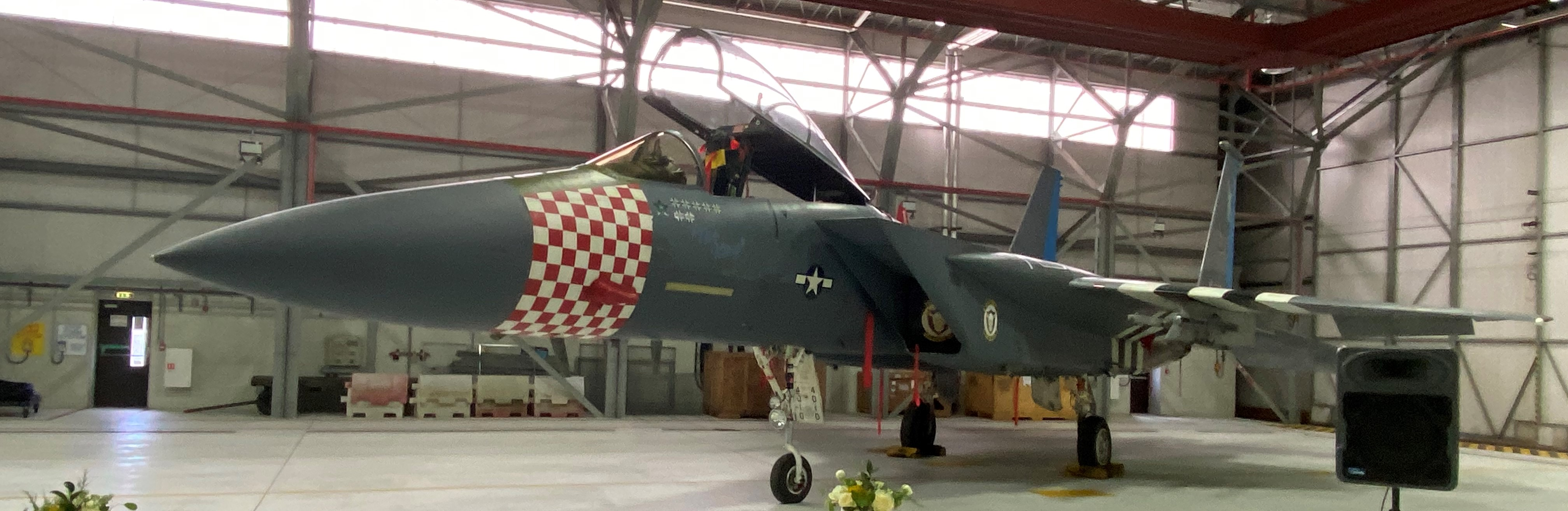 """48th Fighter Wing """"Heritage Jets"""""""